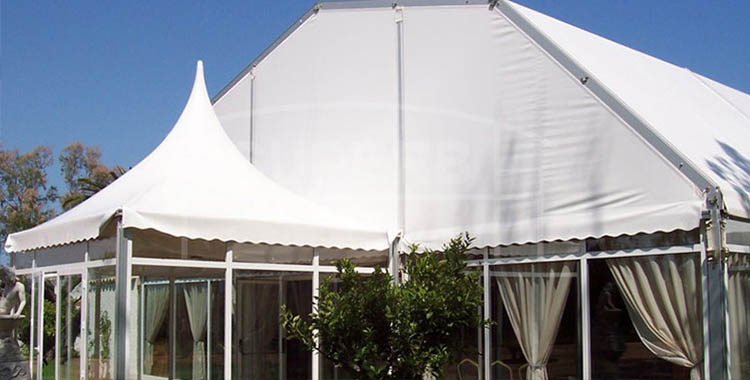 Superb Clear Span Polygon Structure Tent [LS series]
